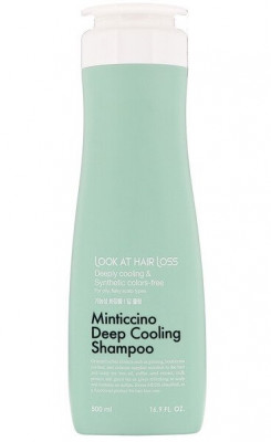 Шампунь для жирной кожи головы DAENG GI MEO RI Look At Hair Loss Minticcino Deep Cooling Shampoo 500мл: фото